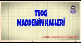 TEOG Maddenin Halleri