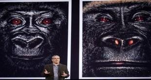 Steven Wise TED Konuşması