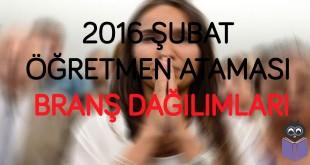 2016-Şubat-Öğretmen-Ataması-Branş-Dağılımları